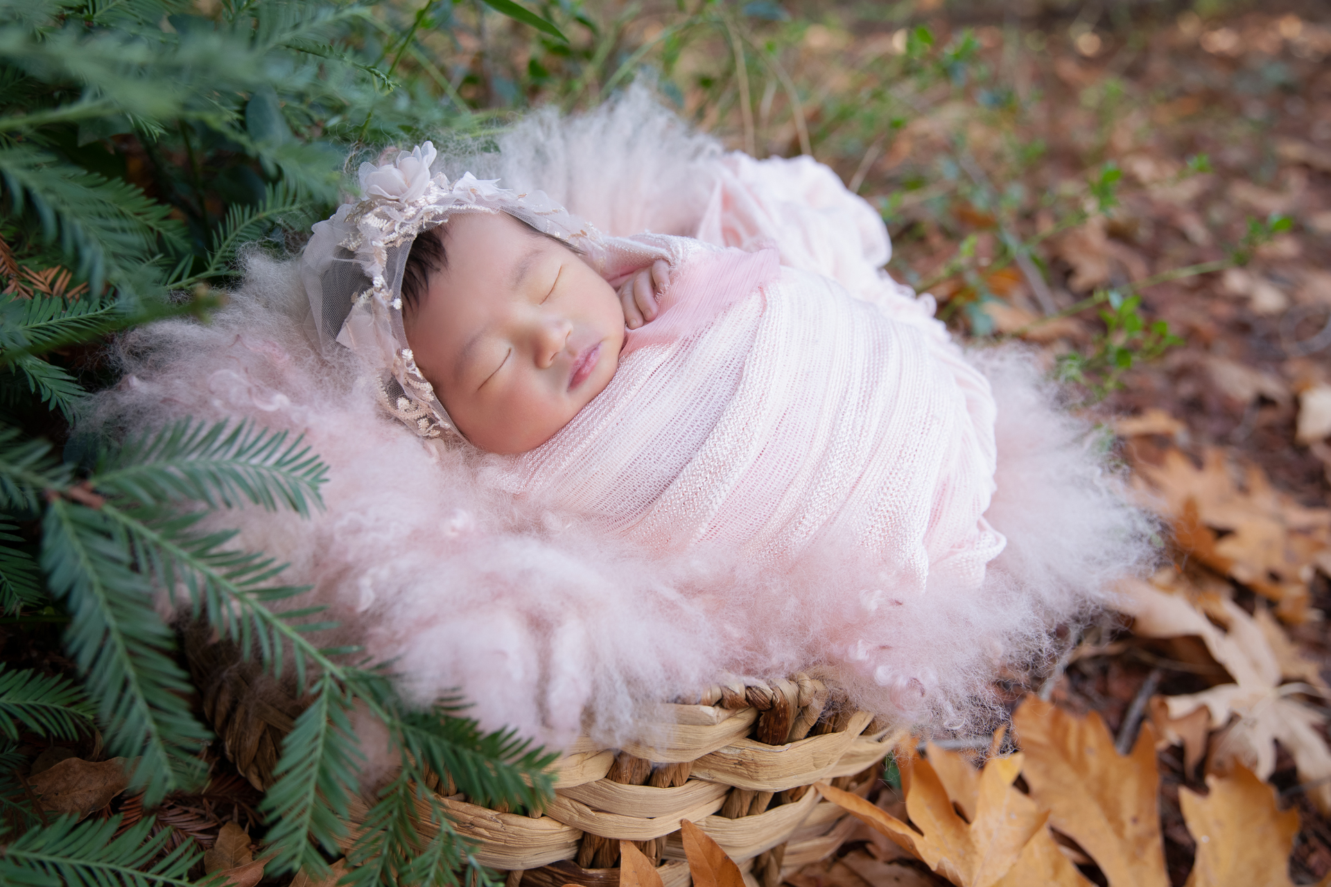 Newborn rests in prop outdoors during fall season while wearing pink hat and pink wrap.