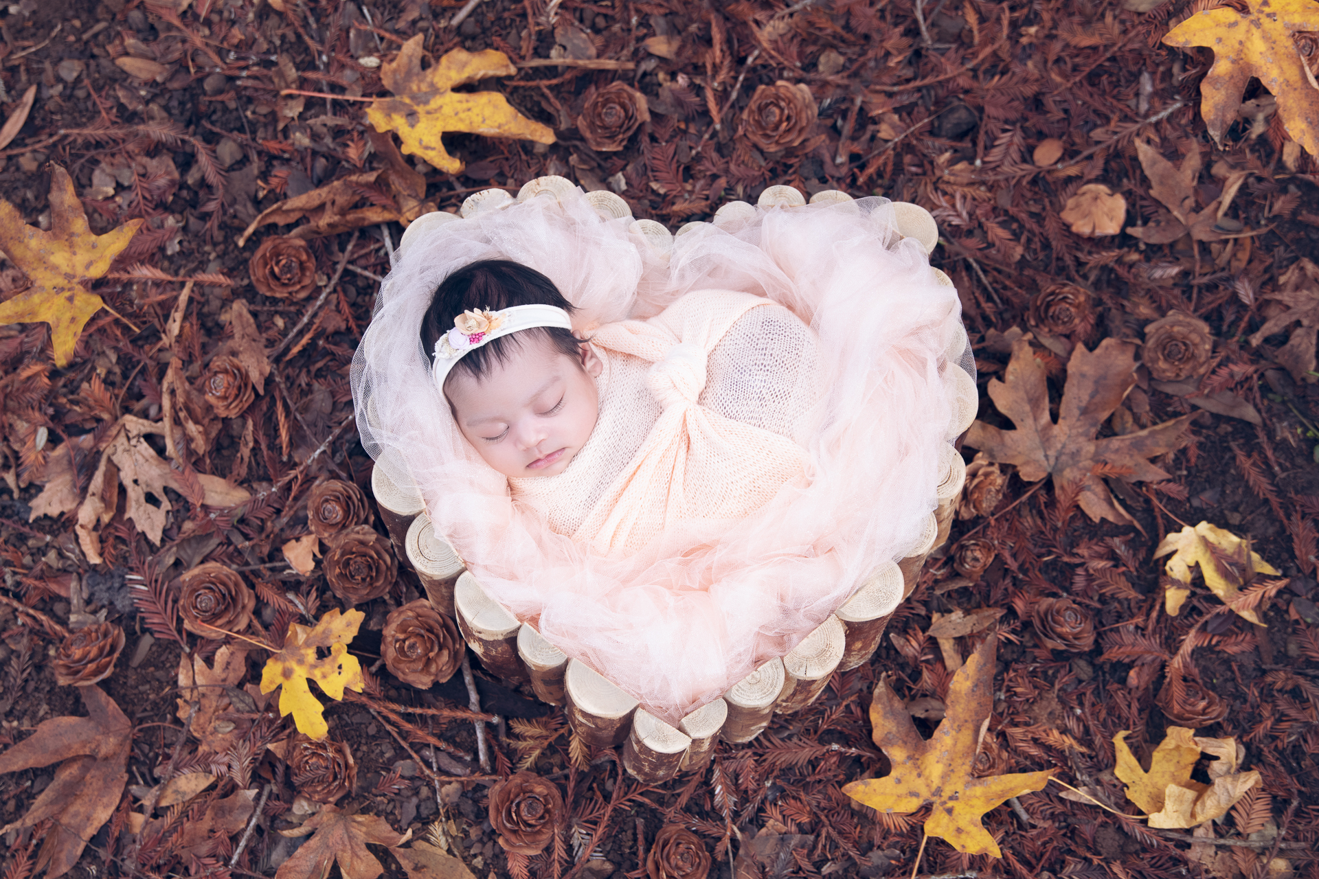 Newborn wearing white headband and beige wrap rests on wood heart shaped prop outoors during fall season.