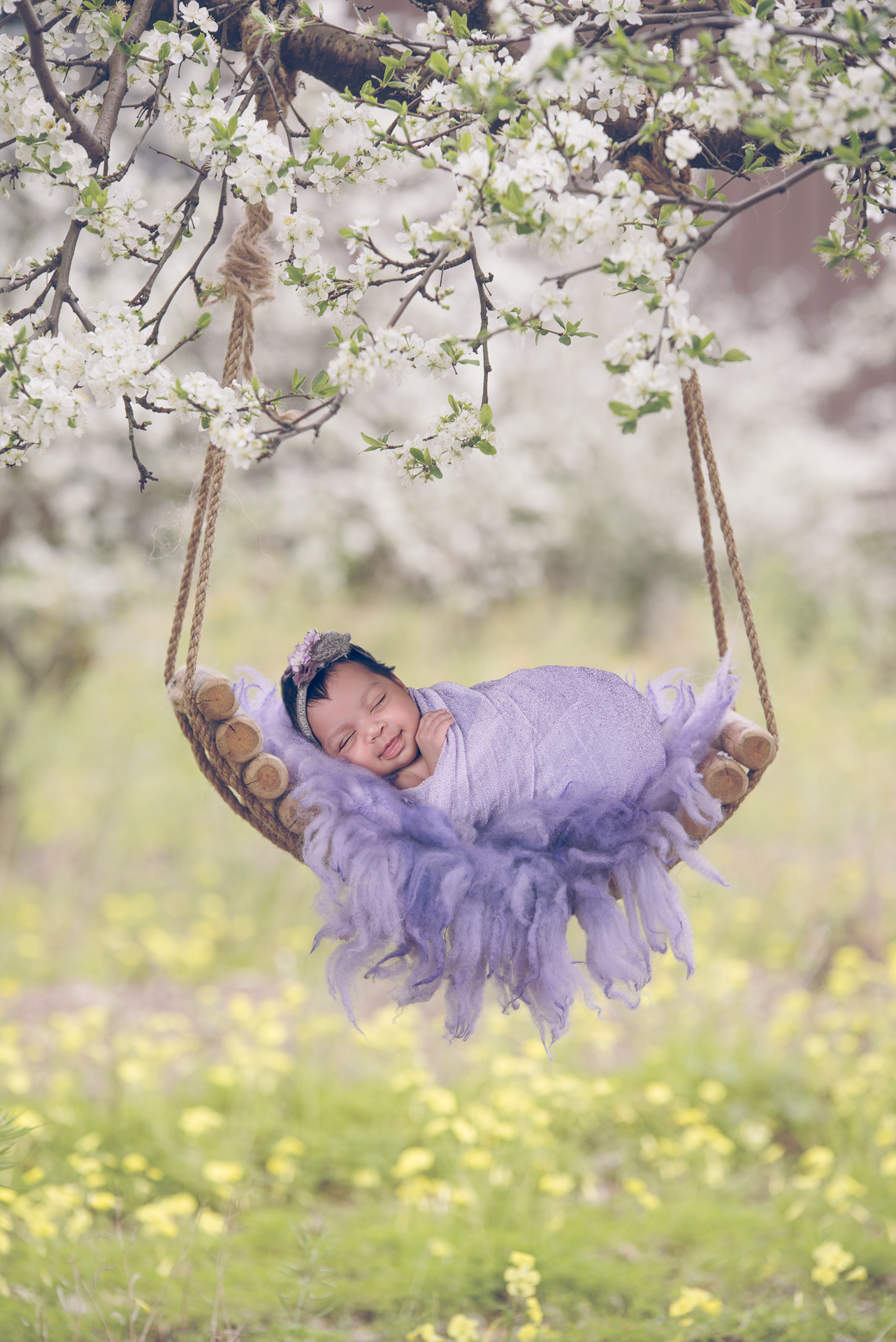 Newborn rests outdoors on hanging hammock prop while wearing purple wrap and purple headband.