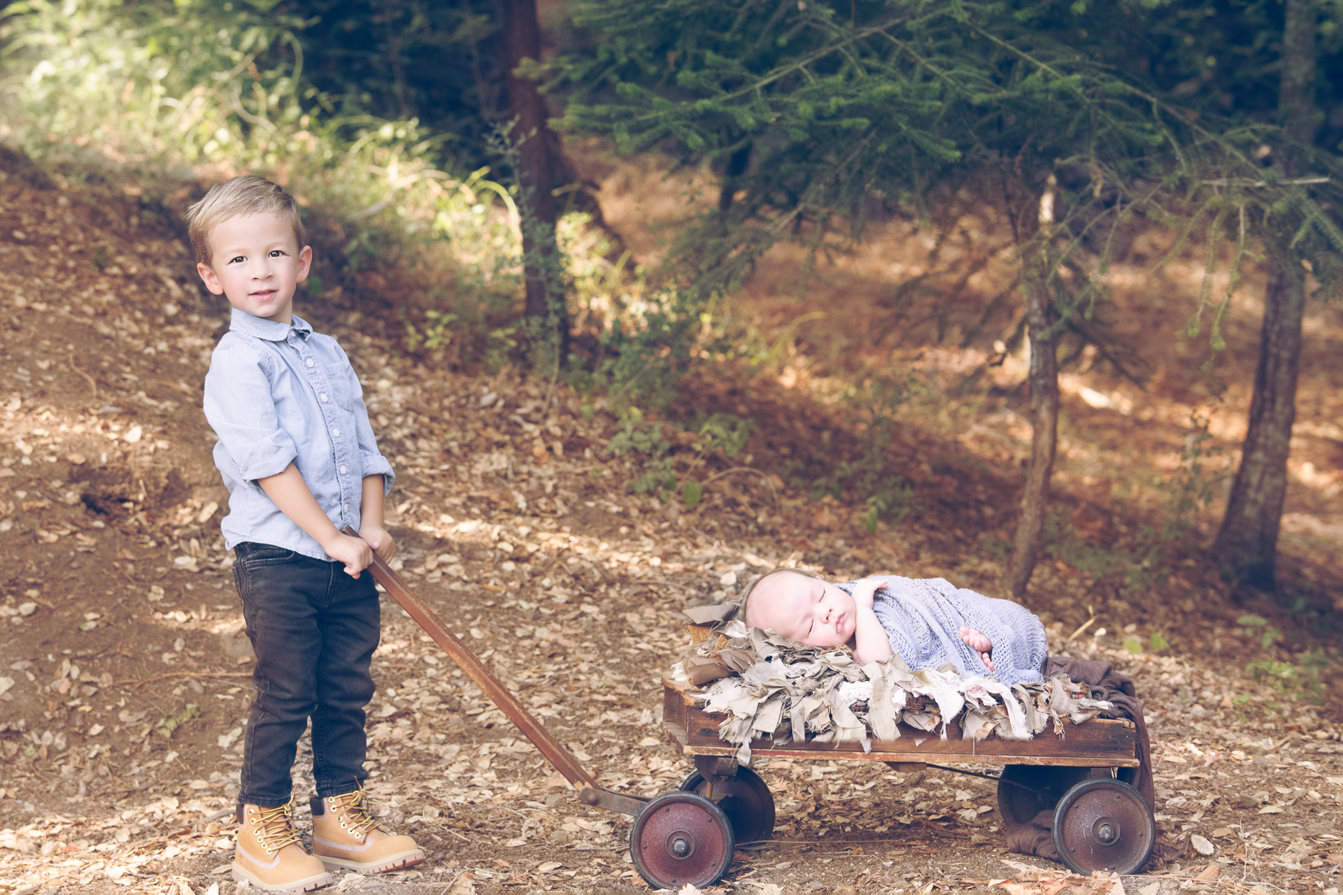 Toddler boy holds onto a wagon handle in which his newborn brother sleeps at. Outdoor fall image.