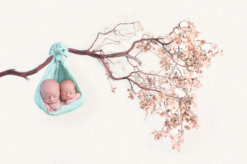 2 newborn babies rest together on a pice of fabric that pretends to be hammock hanging from a branch tree.